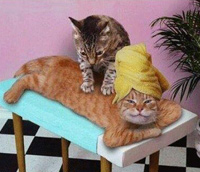 Управление стрессом с помощью психотехник, фото